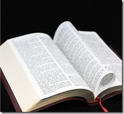 Bible-sxchu-443787-Nafrea_thumb.jpg